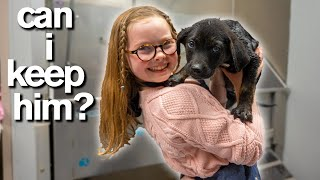 10YearOld Has Only 10 Minutes to ADOPT A PUPPY *Emotional*