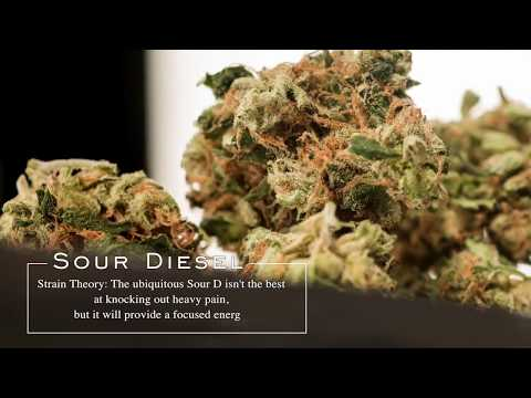 Sour Diesel | Strain Theory
