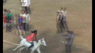 Naogaon hanadar mukto Dibosh A Horse Race Footage 16 12 2 thumbnail