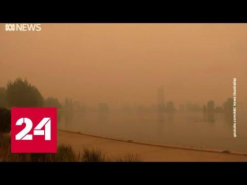 Пожары в Австралии повлияли на проведение матчей теннисного турнира Australian Open - Россия 24