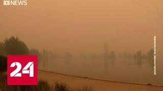 Смотреть видео Пожары в Австралии повлияли на проведение матчей теннисного турнира Australian Open - Россия 24 онлайн