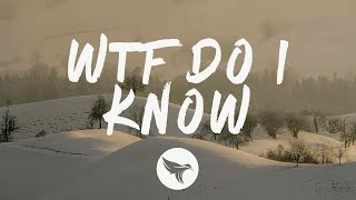 Miley Cyrus - WTF Do I Know (Lyrics)