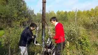 видео Бетонируем столбы для ворот