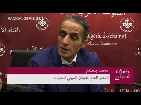 محمد بلعبدي المدير العام للديوان المهني للحبوب