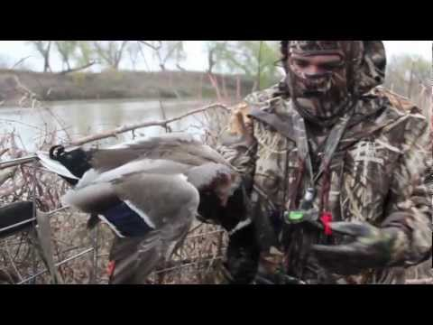Texas Duck Hunting - A Morning From The 2011 Season, Ducks And Bacon