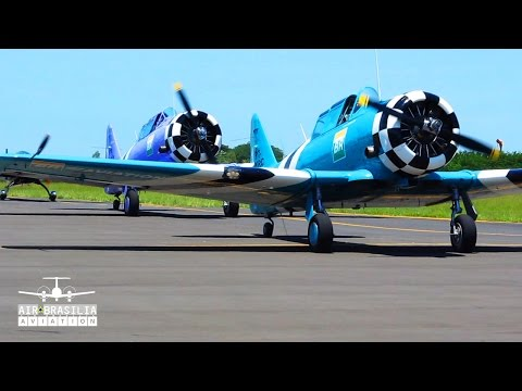 Aviões North American T-6 Texan e Extra 330LX Acrobatics | Amazing Air Show