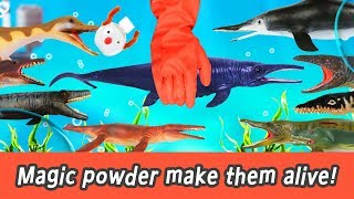 [EN] Magic powder make them alive!!! dinosaurs story, animals names for kids, collecta #200ㅣCoCosToy