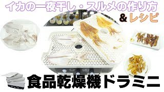 [イカを干物に] スルメ&一夜干しの作り方とレシピ(食品乾燥機ドラミニ)