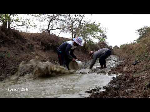 Two Men Find Dry Season Fishing By Fishing In The Deep Canals Best Hand Fishing