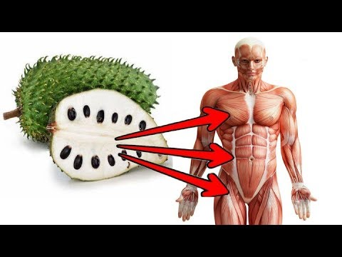 Amazing Soursop Benefits Including it's potential To Fight Cancer
