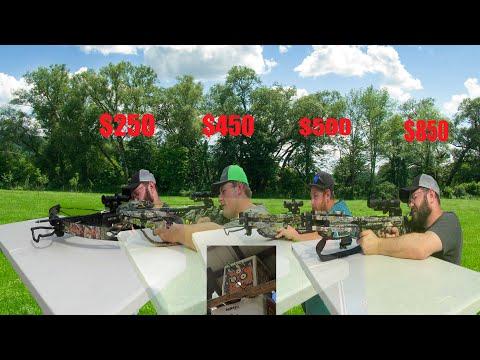 Crossbow Comparison: $250 vs $450 vs $500 vs $850
