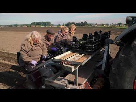 Saaten-Union Biotec: Ausbringen von Pflanzen bei W. von Borries-Eckendorf