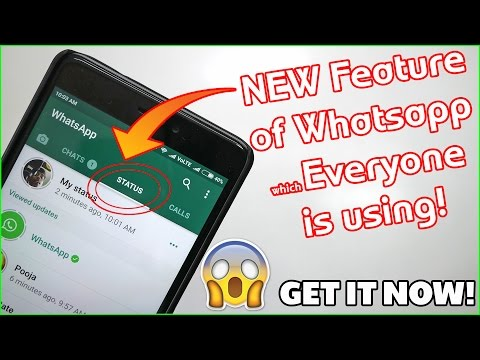 Whatsapp Stories! How to Get the Feature? How to Post/Delete/Hide?