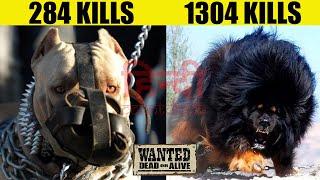 इन कुत्तों को देखते ही जान बचाकर भागे वरना .... | 8 Most Strongest and Fearless Dog Breeds