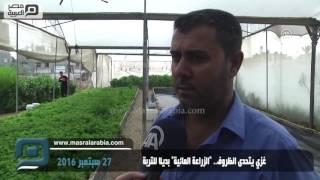مصر العربية | غَزّي يتحدى الظروف..