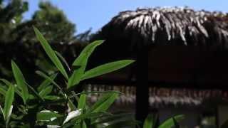 Une journée au Camping La Croix du Sud
