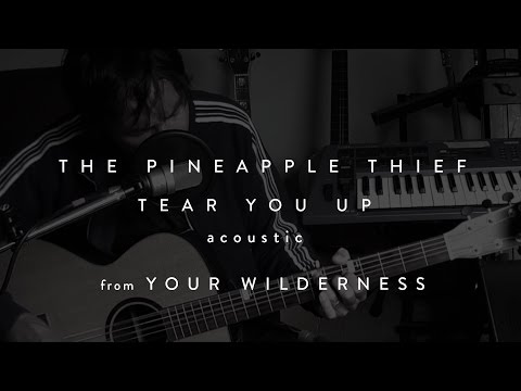 The Pineapple Thief - Tear You Up (acoustic) (from Your Wilderness)