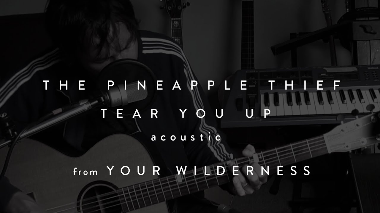 the-pineapple-thief-tear-you-up-acoustic-from-your-wilderness-kscope