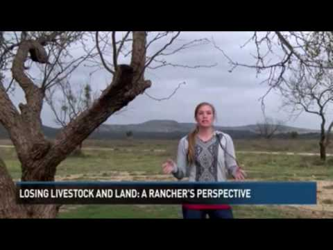 Senora Scott Agriculture Reporter, MSJ,...