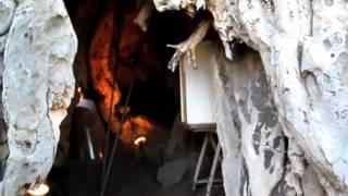 スペイン領・テネリフェ島の龍血樹 thumbnail