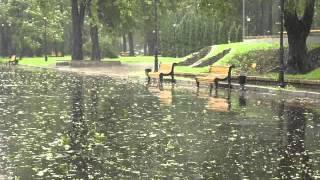 Скачать Вадим Егоров Я вас люблю мои дожди