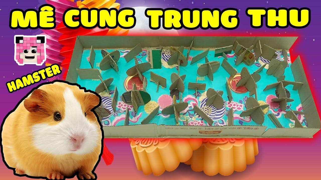 CHUỘT HAMSTER THỬ THÁCH TRỐN THOÁT KHỎI MÊ CUNG TRUNG THU CỦA MỀU*MAZE FOR HAMSTER*Hamster Của Mều