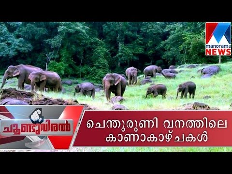 A trip to Shenduruney wildlife sanctuary - Choonduviral 18-09-2016 | Manorama News