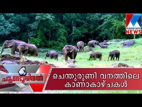 A trip to Shenduruney wildlife sanctuary - Choonduviral 18-09-2016 | Manorama News