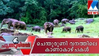 A trip to Shenduruney wildlife sanctuary - Choonduviral 18-09-2016   Manorama News