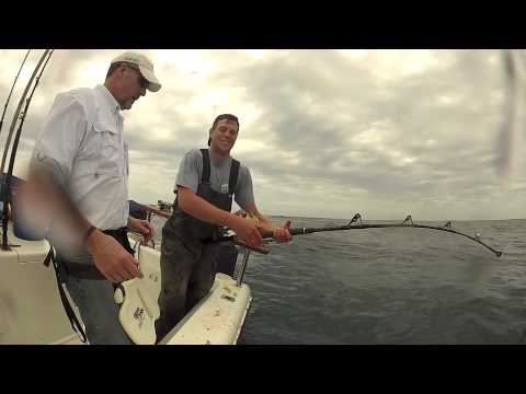 YELLOWFIN TUNA, Hout Bay, Cape Town With Two Oceans Sport Fishing Charters