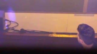 Solo luz - Funambulista (Las rozas)