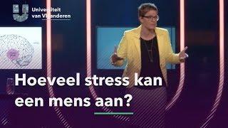 Hoeveel stress kan een mens aan?