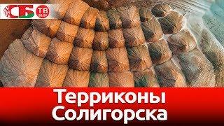 Земля или Марс? Терриконы Солигорска сняли с воздуха на видео 4k UHD