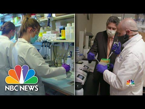 Coronavirus: Top Labs See Real Progress On Immunity, Vaccine | NBC Nightly News
