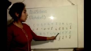 Download PALOMINO ALANYA SOFIA-TIC1