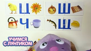Учимся с Лунтиком   Алфавит, буквы от Ц до Я   Сборники новых серий