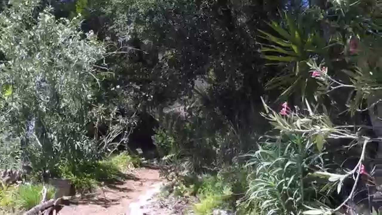 amirs garden los angeles hikes - Amirs Garden