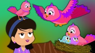 chidiya rani hindi rhymes hindi poems and balgeet kids tv india hindi nursery rhymes