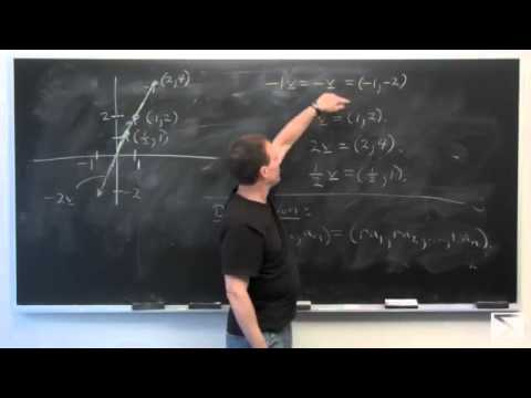 Worldwide Calculus: Rn as a Vector Space