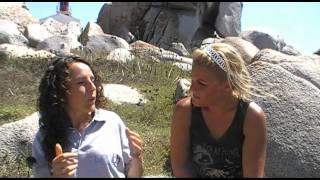 IMEDD - SUIVI SCIENTIFIQUE - PARC MARIN INTERNATIONAL DES BOUCHES DE BONIFACIO