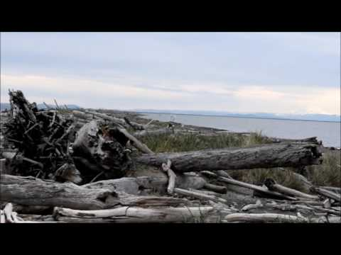 A walk out Dungeness Spit in Washington state 4/22/17