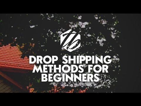 Drop Shipping For Beginners — Free Plus Shipping And Discount Plus Free Shipping | #169