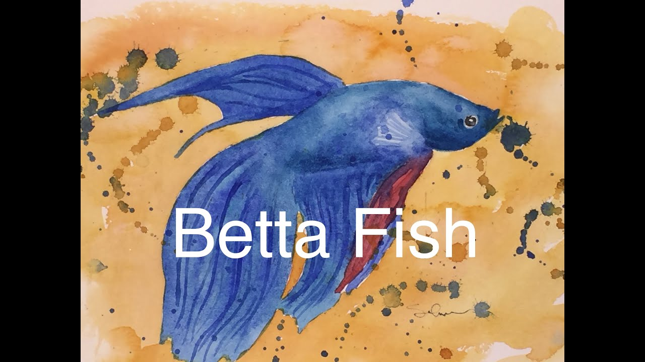 How to paint a fish in watercolour watercolor betta for How to paint a fish