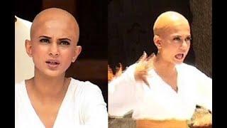 Shocking! bold & beautiful jennifer winget aka maya goes bald for beyhadh | tv | spotboye