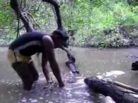 Pesca na aldeia com o Cipó Timbó - Pintado, Tucunaré, Cachorra, Barco, Rio, Trilha e a Lagoa