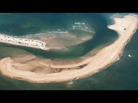 La isla que acaba de aparecer en el Triángulo de las Bermudas es muy extraña y peligrosa