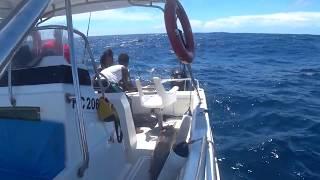 Сейшелы рыбалка