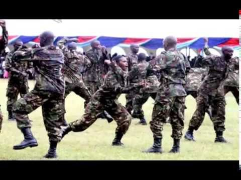 A TRIBUTE TO THE KENYA DEFENCE FORCES
