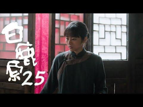 白鹿原 | White Deer 25【DVD版】(張嘉譯、秦海璐、何冰等主演)
