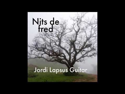 Nits De Fred - Jordi Lapsus Guitar